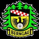 Profilbild von SV Berngau